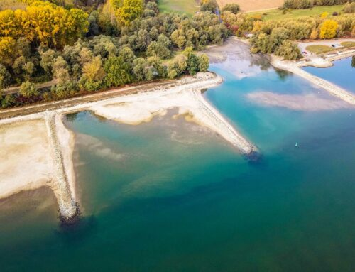 Gewässer-Steckbrief: Rhein Teil 2: Die Buhne