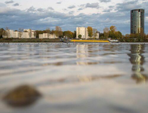 Gewässer-Steckbrief: RheinTeil 1: Eine Übersicht