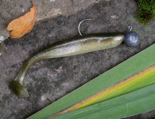 Köder fürs Spinnfischen Artikelserie für Angelanfänger (Teil 4)