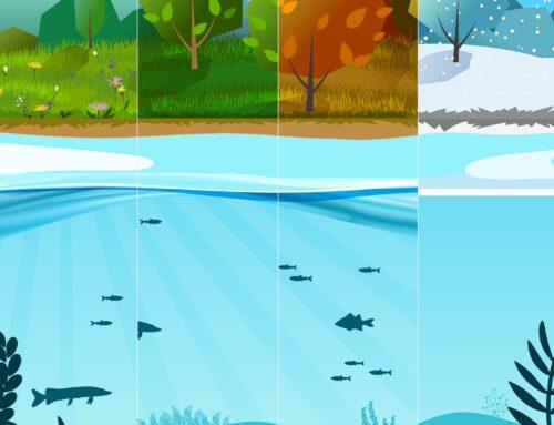 GewässerkundeJahreszeiten und Wassertemperatur